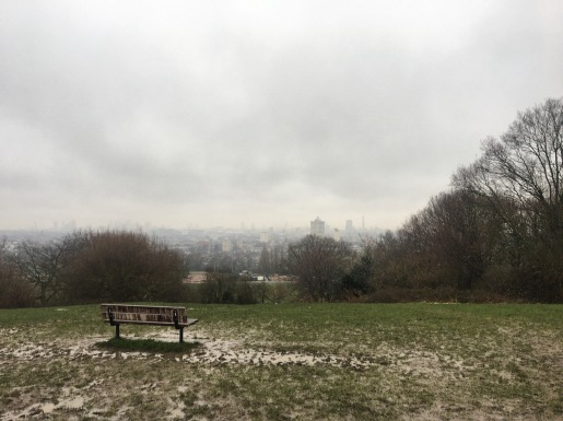 hampstead heath.JPG